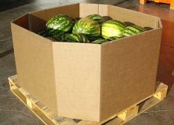 Embalajes para el sector de la Alimentación